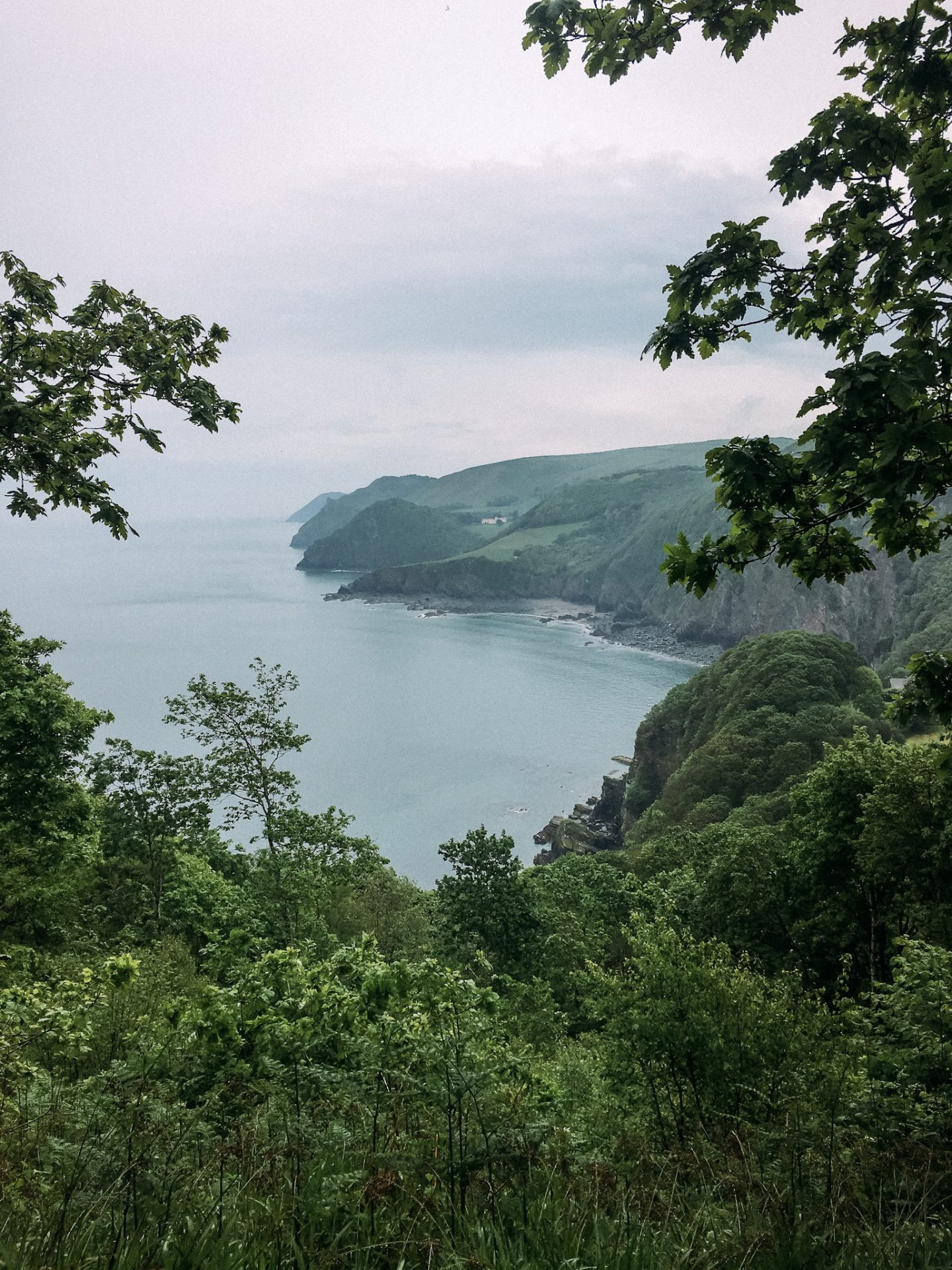National Trust Walk in Devon