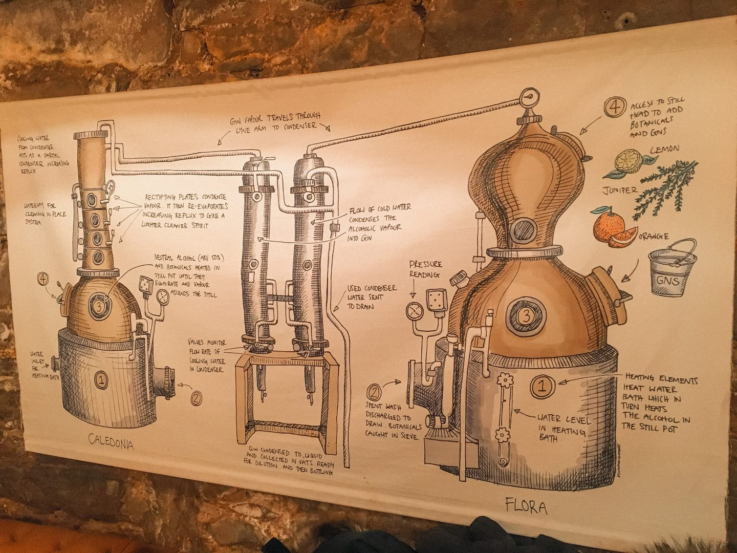 Gin discovery tour at Edinburgh gin distillery in Edinburgh