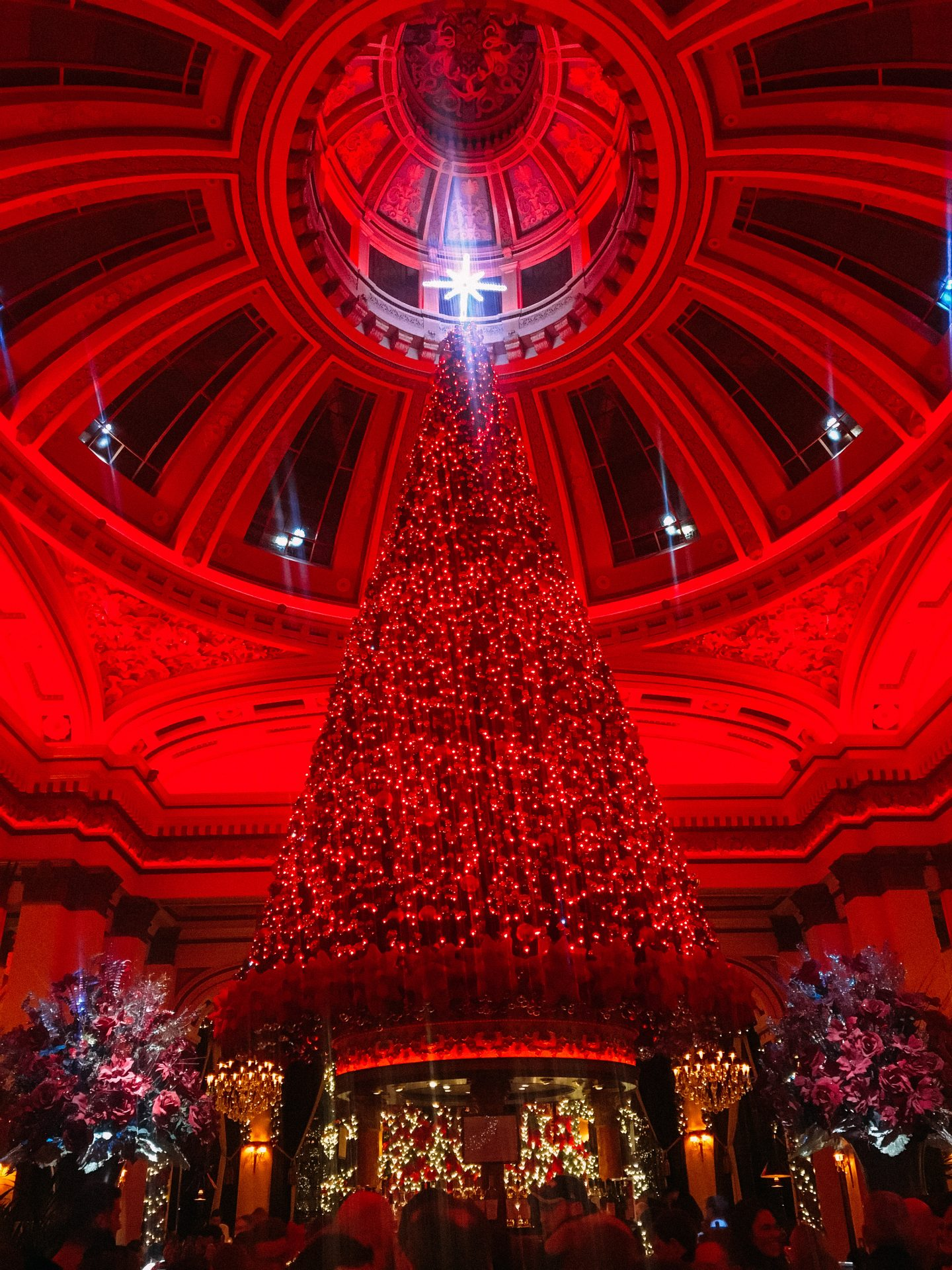 The Dome in Edinburgh christmas tree